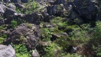 「鬼押し出し園」は一度訪れる価値あり。浅間山から噴出した溶岩石が作った「絶景」