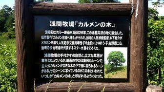 日本初のカラー映画撮影現場「カルメンの木」。浅間牧場茶屋の裏手は「白糸の滝」へ続くハイキングコース。「丘を越えて」の碑も。